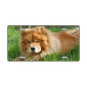 Chow Chow Dog Pet Novelty License Plates Full Color Photography