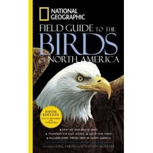 Natl Geo Field Guide to Birds   North America   5th