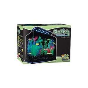 Group Tetra 972151 Tetra Glofish Aquarium Kit   3 Gal