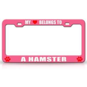 MY HEART BELONGS TO A HAMSTER Dog Pet Steel Metal Auto License Plate